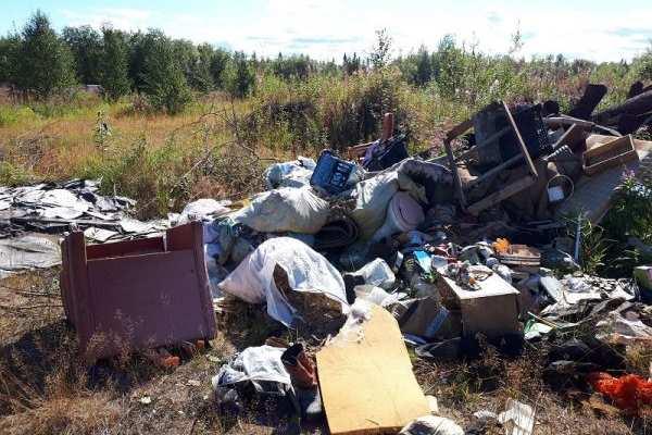 Активисты ОНФ выявили две большие мусорные свалки в лесу под Печорой