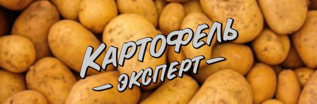 KartofelExpert.Ru